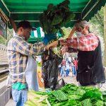 Realizarán Mercado de Trueque en Bosque de Tlalpan