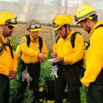 Mexicanos viajan a Canadá para combatir incendios