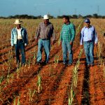 Especialistas prevén fuertes sequías en México