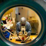 Crean potente molécula contra enfermedades por hongos