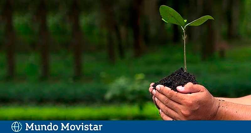 movistar-ambiente01