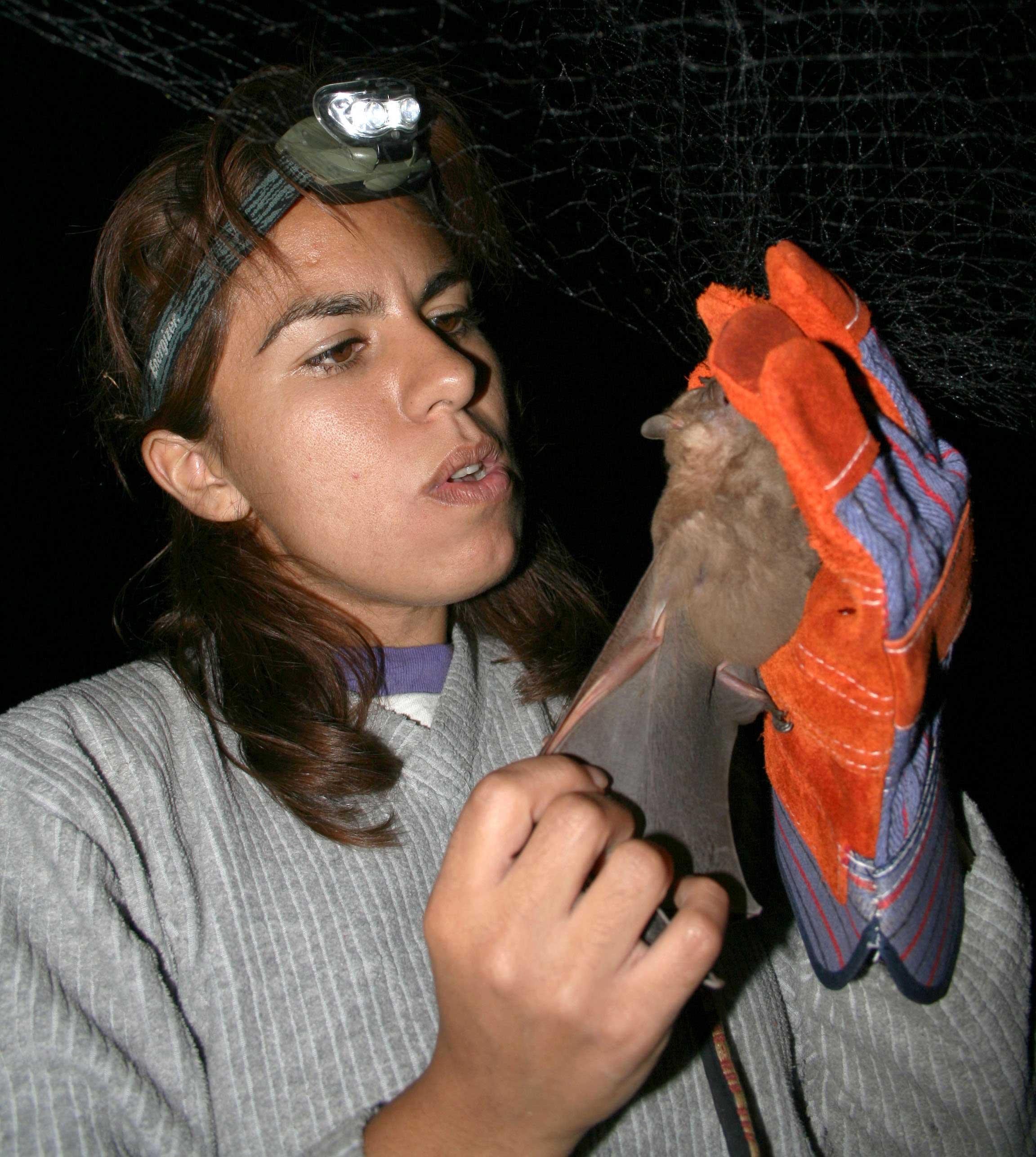 murcielago-polinizadores
