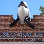 Visita al Museo de la Ballena en BCS