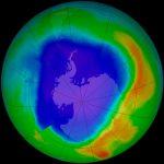 NASA analizaría fotosíntesis desde el espacio