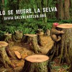 Pide organización defender Madagascar contra ganadería y tala