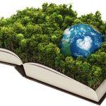 Origen e importancia de la ecología política