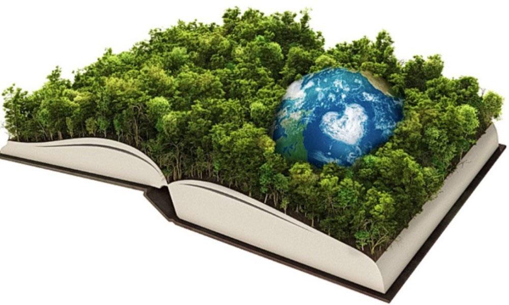 origen-ecologia