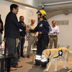 Perros rescatistas de la UNAM reciben tributo