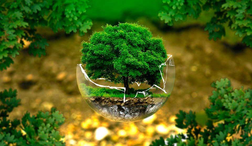 persona-sustentable01