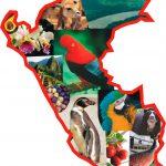 Perú confirma su condición de megadiverso