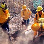 Pico de Tancítaro en Michoacán cuenta con plan contra fuego