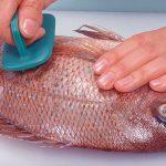 Crean plástico biodegradable con escamas de pescado