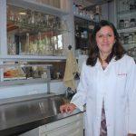 Desarrollan polímeros para tratar lesión de médula espinal