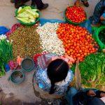FAO presentará nuevo informe Panorama de la Seguridad Alimentaria
