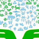 Organizaciones presentan propuestas para la conservación