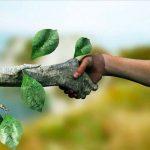 Promueven eventos de armonía con la naturaleza