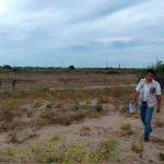 Clausuran predio por cambio de uso de suelo en Sinaloa