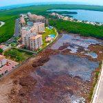Profepa impone multa de 6.6 mdp a inmobiliaria en Cancún