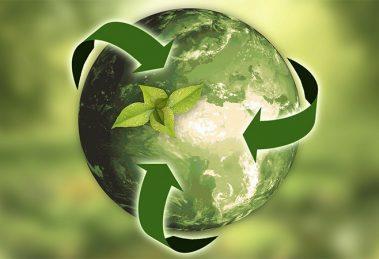 Aumenta 10 % recuperación de envases reciclables en México: ECOCE