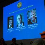 ¿Por qué investigación sobre reloj biológico ganó Premio Nobel?