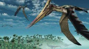 De nuevo en Coahuila, hallan fósiles de reptil volador no catalogado