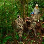 Reserva Biosfera El Triunfo, prioritaria para conservación de las aves