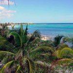 Revillagigedo, el Parque Nacional marino más grande de México