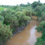 Saneamiento del río Atoyac desencadena clausuras de empresas