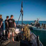 Sea Shepherd reconoce labores de rescate de la vaquita marina