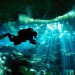 Descubren un súper arrecife en el Golfo de México