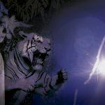 Terror y estrellas en el Museo de Historia Natural
