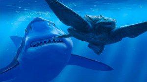 tiburones-cazar01