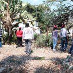 Buscan resolver tráfico vial en Oaxaca con ciencia