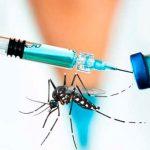 Avanzan vacunas contra el zika