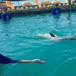 Falla rescate de ejemplar vaquita marina y muere