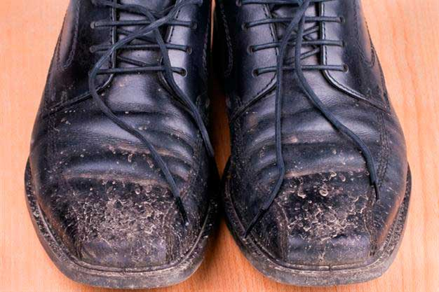 zapatos-casa01